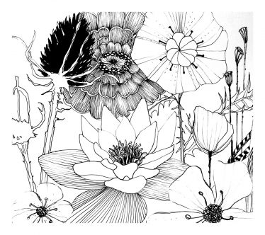 ink drawing flowers